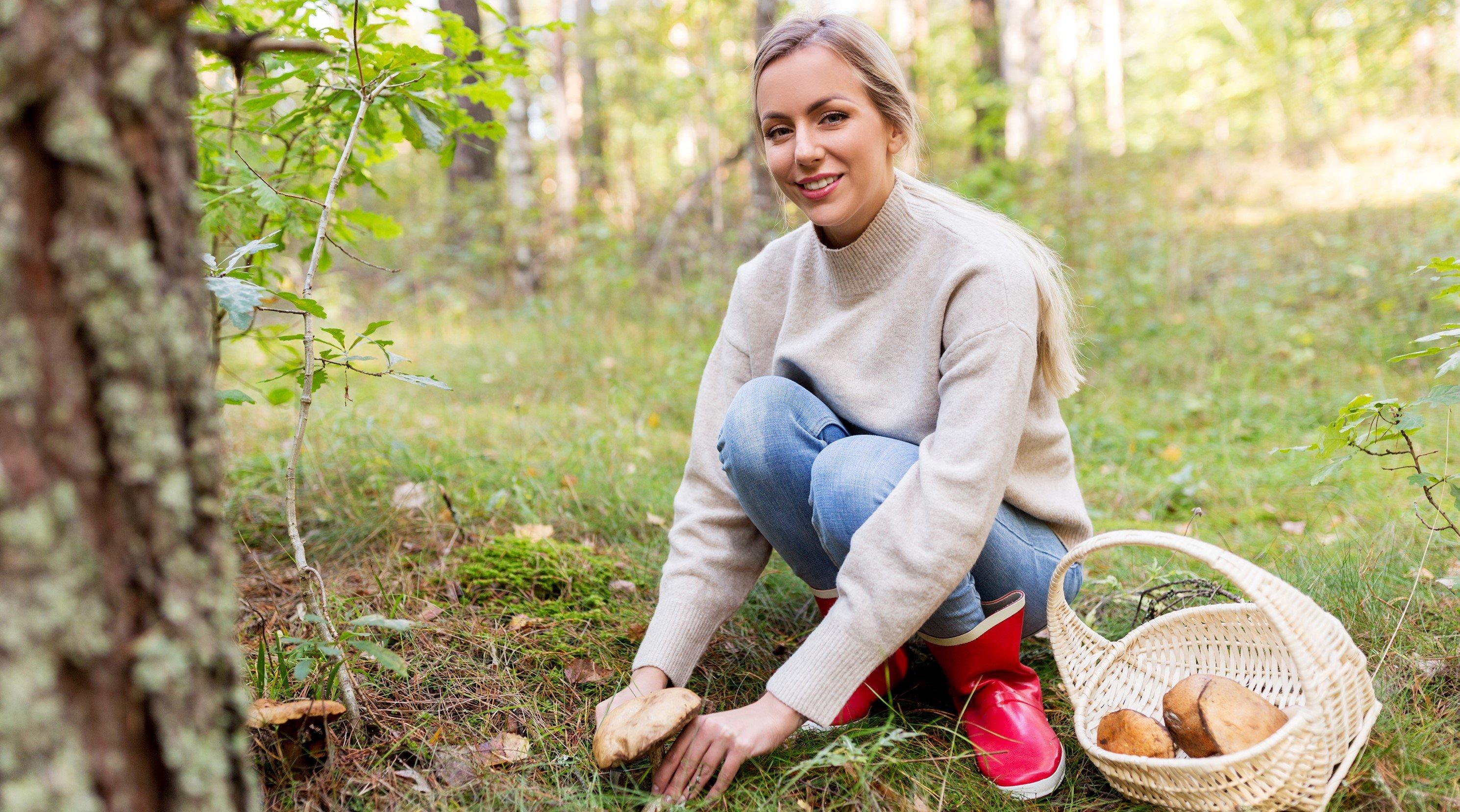 Bis in den Herbst hinein lassen sich leckere Pilze im Wald suchen und finden. Das Hobby tut ganz nebenbei auch der körperlichen Fitness gut. Quelle: WetterOnline