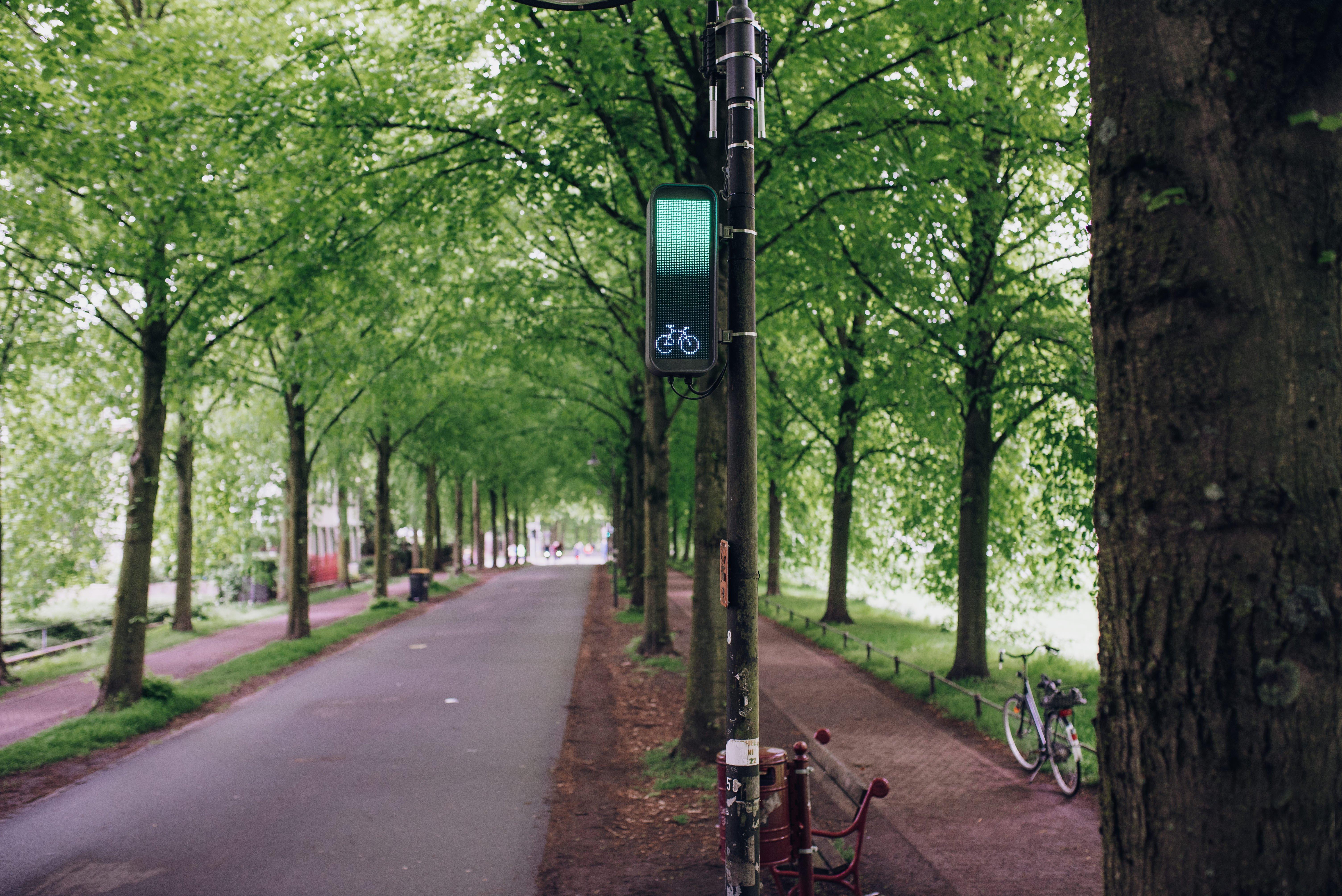 """""""Anhand der dynamischen Anzeige können Radfahrende individuell die Geschwindigkeit anpassen."""